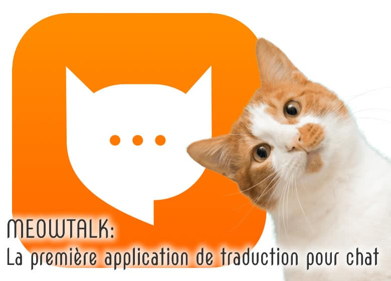MEOWTALK: la première application de traduction pour chat