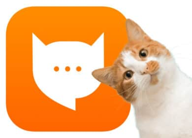Photo de MEOWTALK: la première application de traduction pour chat